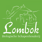 Lam-bout, 400gram (per 2, vers, Lombok, bio)